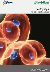 ENZO Life Sciences Autophagy