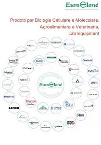 Programma di Vendita Div. Biotecnologie
